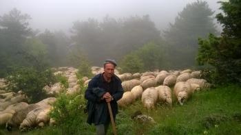 Tarımsal Danışmanlık Fotoğraf Galerisi
