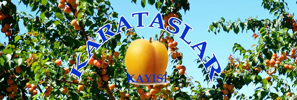 www.karataslarkayisi.com | 0 422 324 35 70 | E-mail: zerdali@karataslarkayisi.com