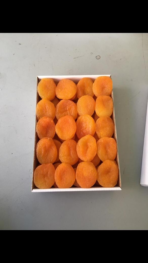 KAYISI Sevkar Gıda Tarım Ürünleri San.ve.Tic.Ltd.Şti